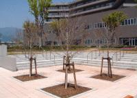 ehabilitation space02